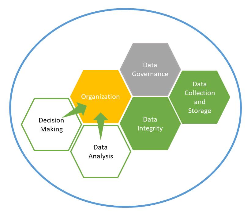 Data Science Maturity Disciplines